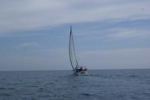 sailing_away